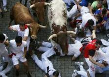 running-bulls