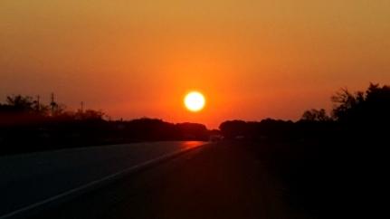 Selma Sun